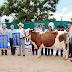 """Concluye con Éxito el XX Concurso Estatal de la Vaca Lechera """"General. Absalón Castellanos Domínguez"""""""