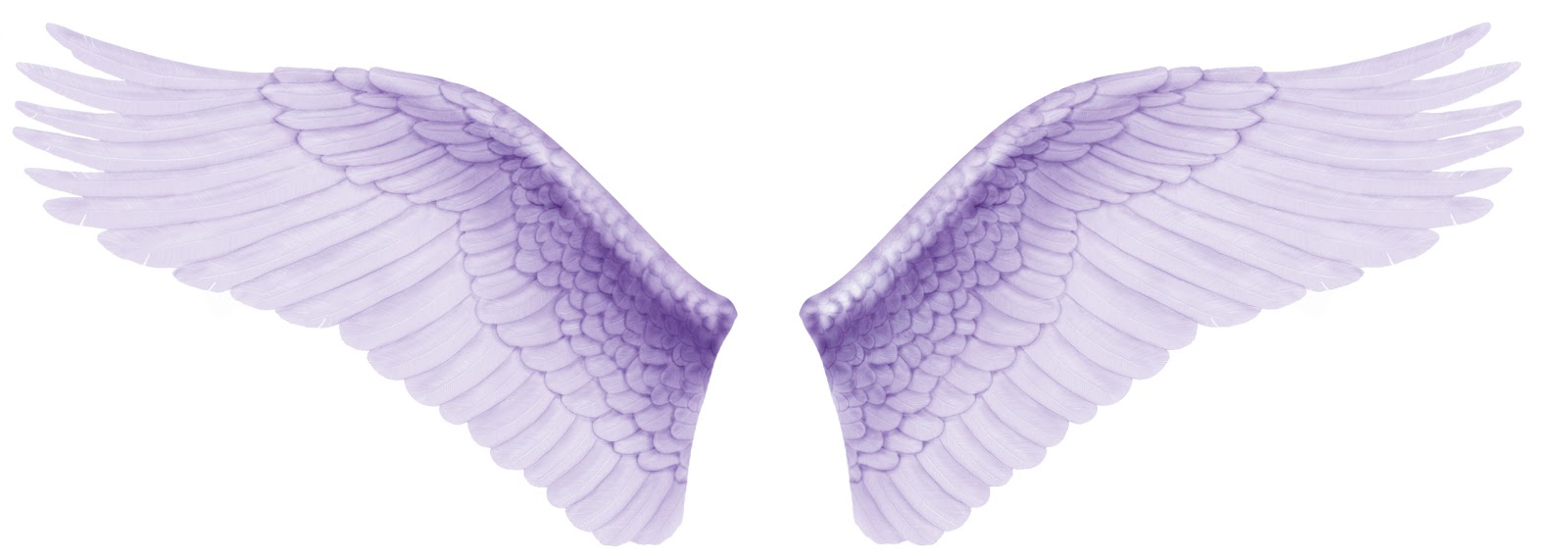 Iphone Wallpaper Icon Template Psd Files Free Download Angel Wings Angel Wing Tattoos