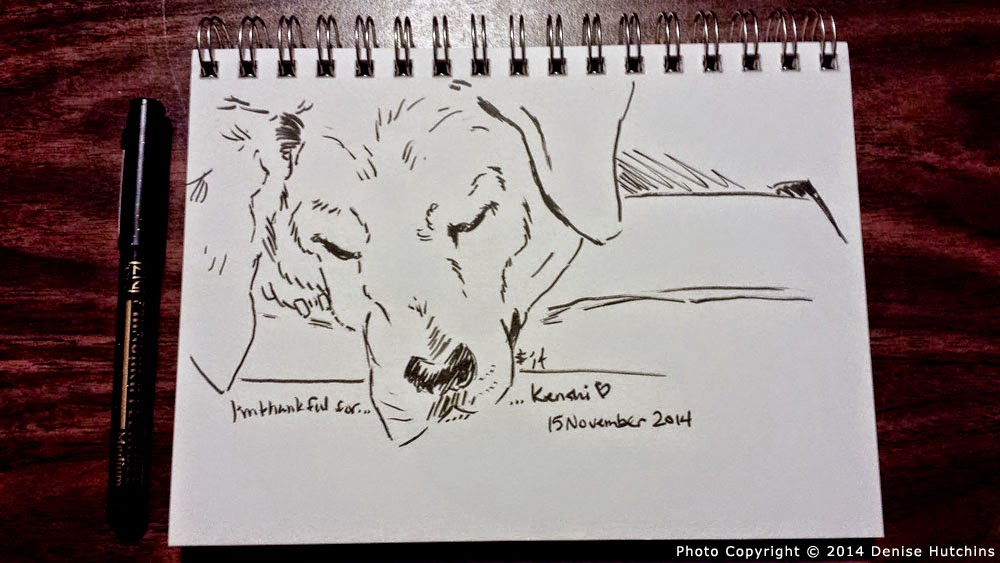 Ink Sketch of Sleeping Hound-Mix