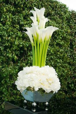 Gambar Bunga Lili Putih Yang Cantik_White Lily 2016012