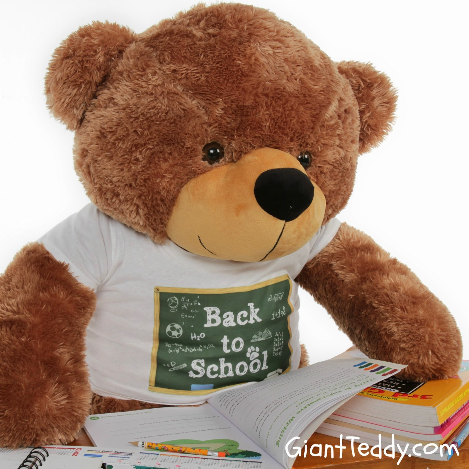 4ft mocha teddy bear Sunny Cuddles in adorable chalkboard shirt