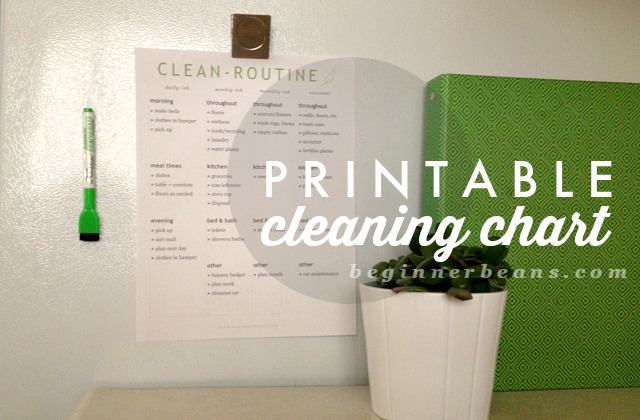 simple printable cleaning routine