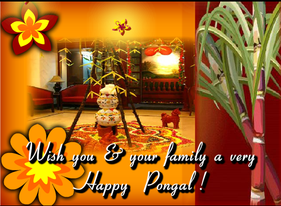 Pongal Wallpapers For whatsapp