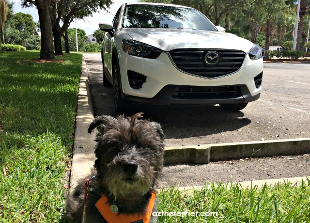 oz with 2016 mazda cx-5 crossover suv