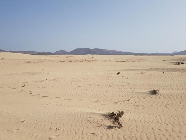 Deserto Fuerteventura Canarie