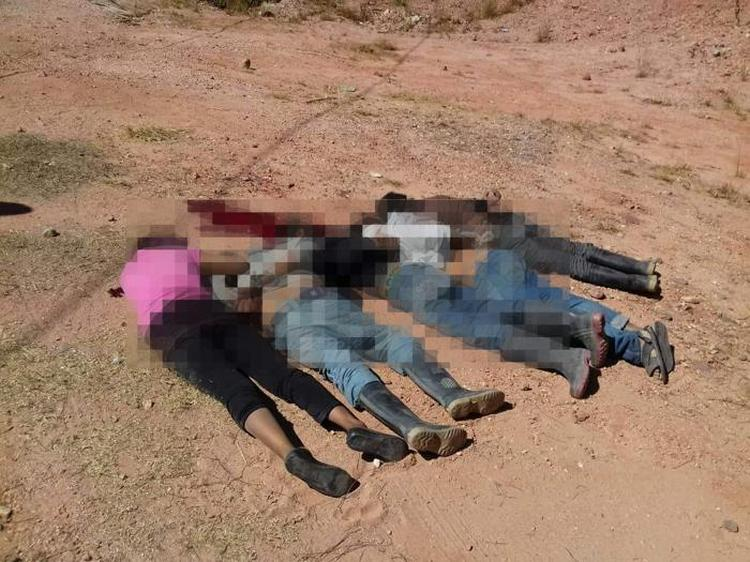 Localizan a cinco cadáveres ejecutados en Guerrero