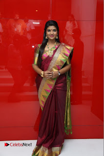 14th Chennai International Film Festival Opening Ceremony Stills  0021.jpg