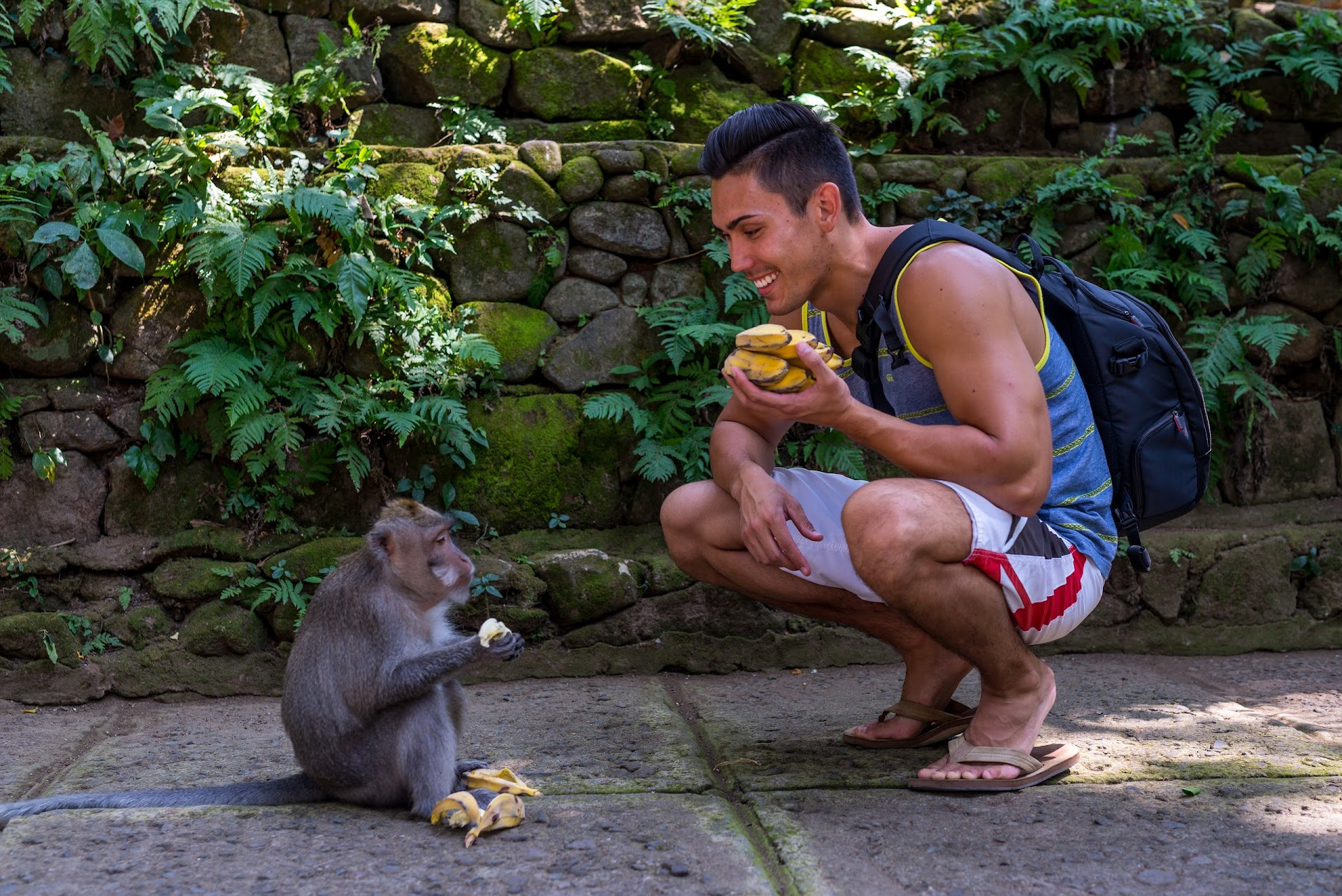 jungle, travel blog, bali ubud, monkey sanctuary, nature landscape photography, photographer california san francisco bay area, travel blogger, southeast asia, couple bloggers, animals, feedings, california travel blogger, lds mormon, asian, korean, japanese