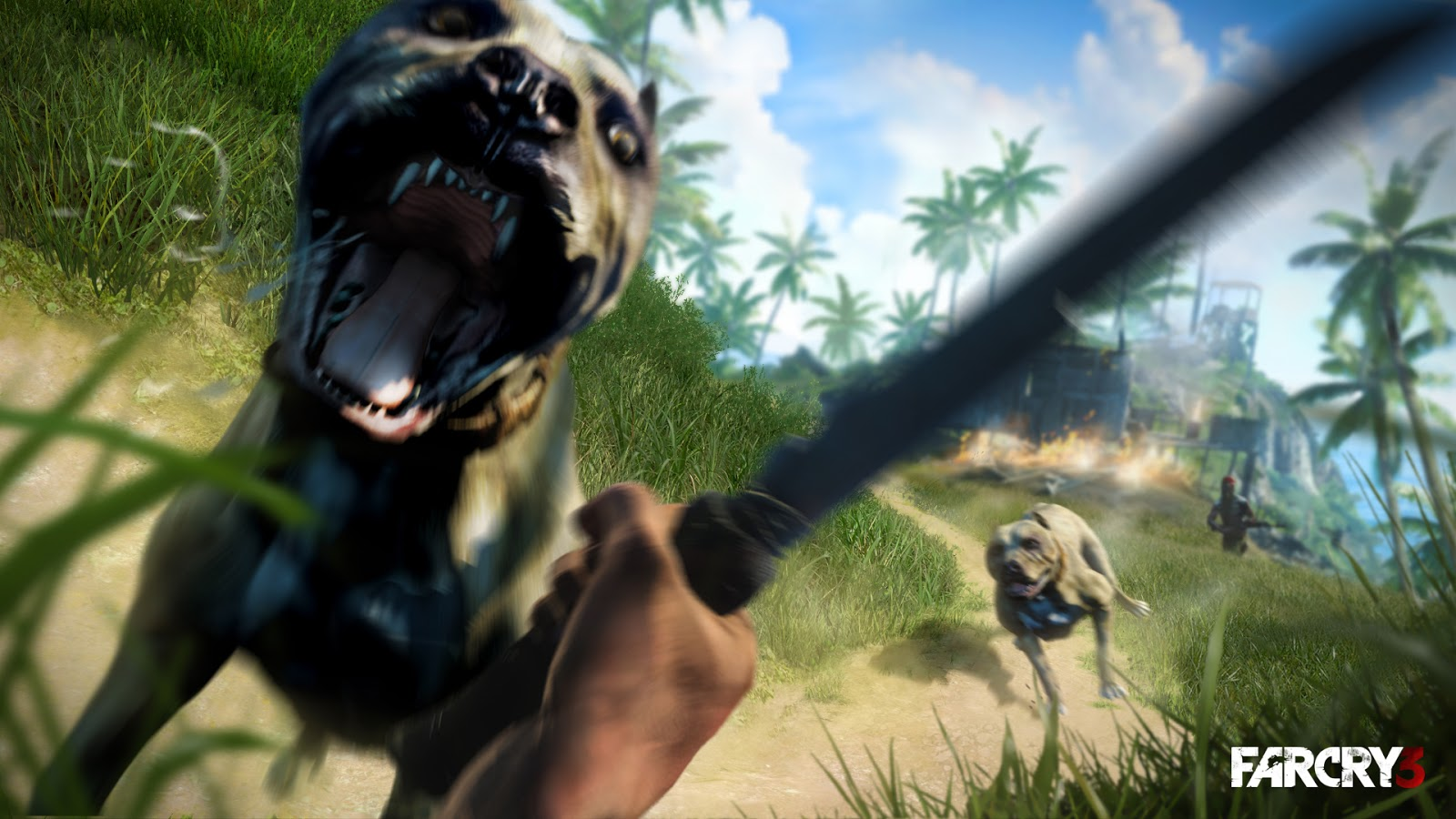 Far Cry 3 CD Key