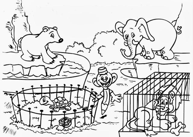 tranh tô màu động vật cho bé tập tô màu 21