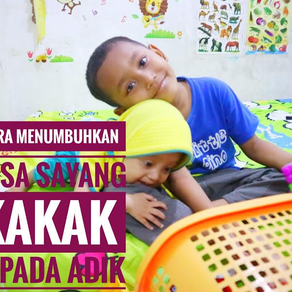 Cara  Menumbuhkan Rasa Sayang Kakak Kepada Adik