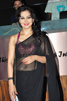Juliana Nicola sizzling in saree 007.JPG