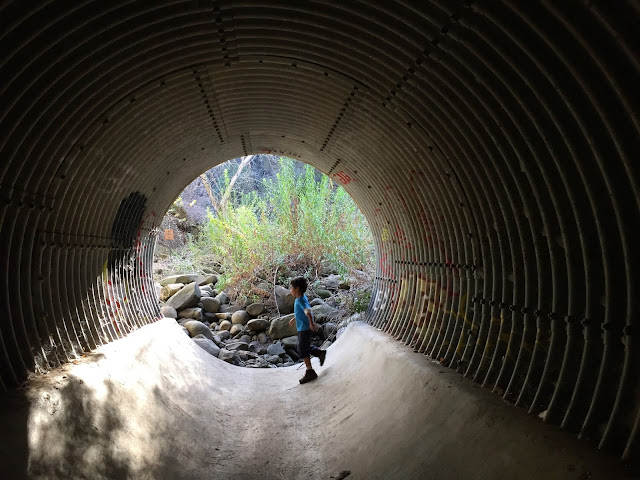 tunnel Stebbins Cold Canyon