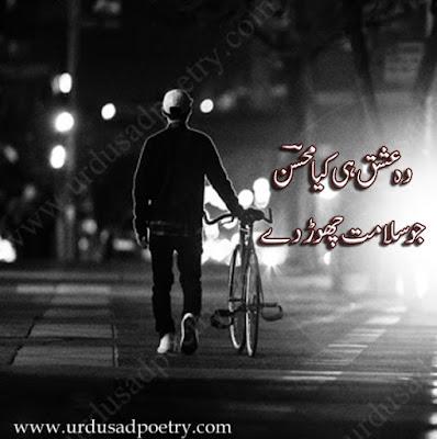 Wo Ishq Hi Kya Mohsin