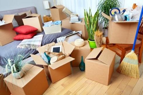 Peralatan Rumah Tangga yang Wajib Ada di Rumah Barumu