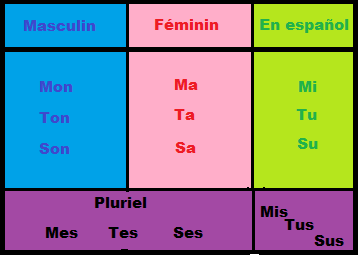Francés Fácil Y Algo Mas Adjectifs Possessifs