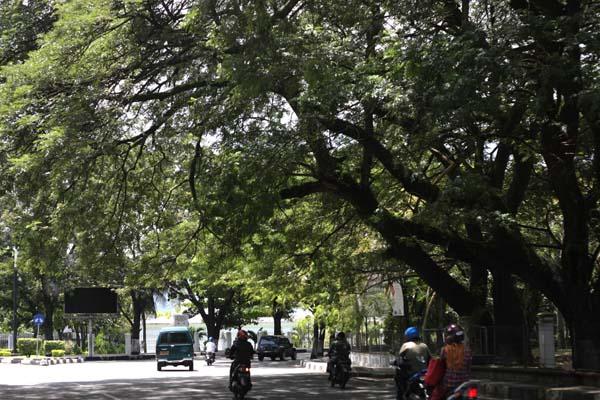 Banda Aceh Menuju Hijau 30 Persen Aceh Tourism Agency