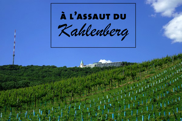 vienne döbling stadtwanderweg 1 kahlenberg vignes randonnée