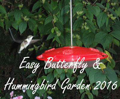 easy butterfly and hummingbird garden