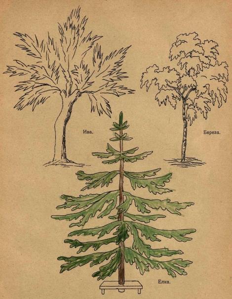 учимся рисовать елку и другие деревья