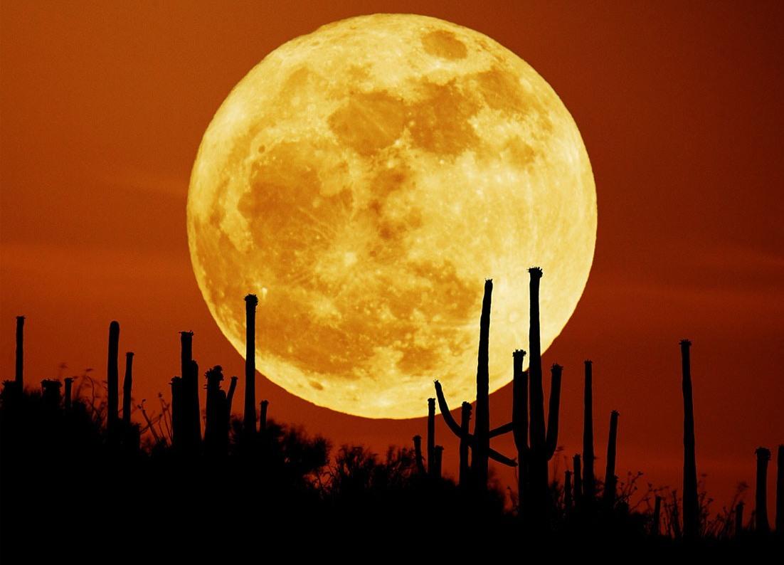 94b3edecd A lua cheia de hoje, 29 de agosto de 2015 é a primeira de três superluas  deste ano. É uma Lua cheia perto do perigeu, ou perto de seu ...