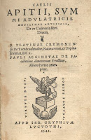 The Apicius De re culinaria recipe collection was the first book published of food recipes, a befitting start to the Wine Dine And Play recipe page