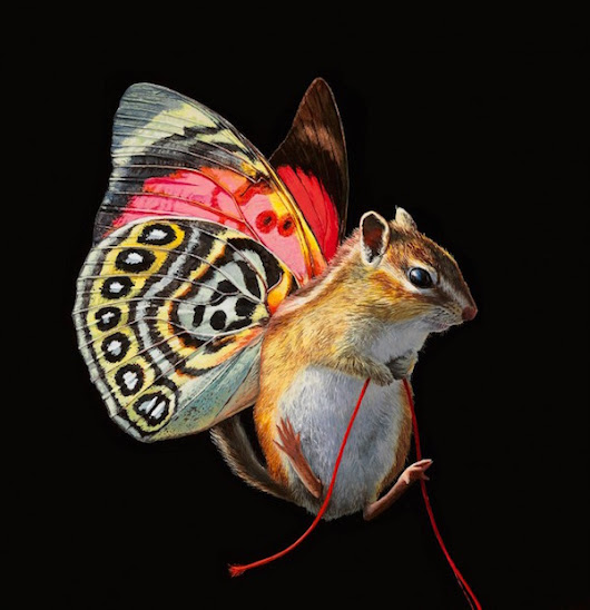 Hyperrealistic Paintings of Mouses With Wings & Fishes