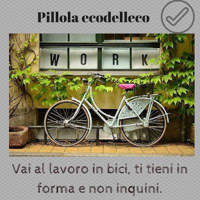 andare in bicicletta - ecodellecologia.it
