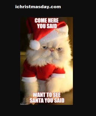 christmas memes for cute