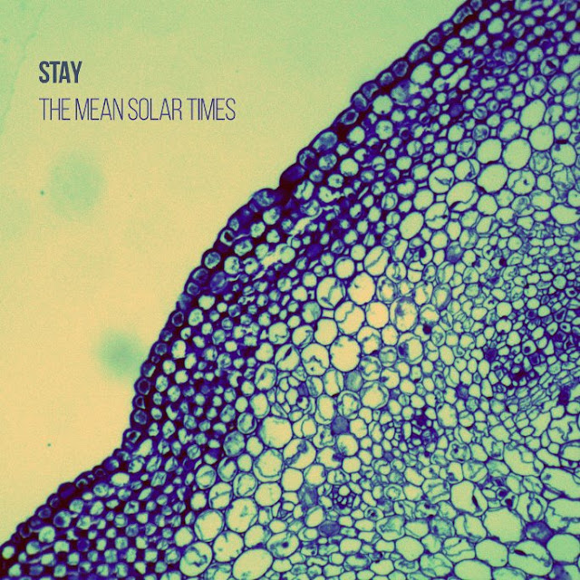 disco STAY - The mean solar times