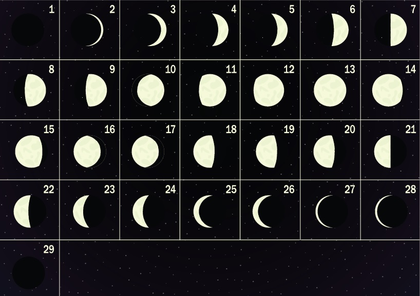 5.Sınıf Ay'ın Hareketleri ve Evreleri Konu Anlatımı - fenbilim.net