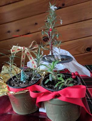 Mini Christmas Planters