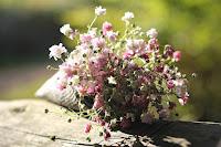 apéritif économique aux fleurs et aux fruits