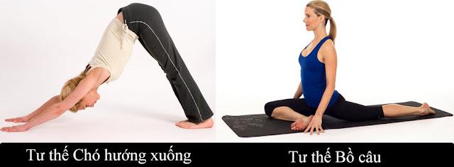 Người lớn tuổi nên biết 3 tư thế Yoga giảm cơn đau lưng dưới cực kỳ hiệu quả này