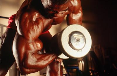 biceps training intensity
