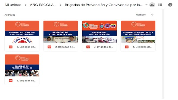 Orientación N° 13 del Año Escolar 2018-2019, Conformación y Organización de las Brigadas de Prevención y Convivencia por la Paz