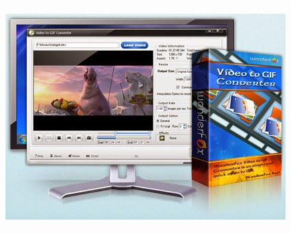 WonderFox Video to GIF Converter 1.2 + Crack