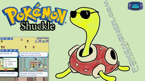 Pokemon Shuckle