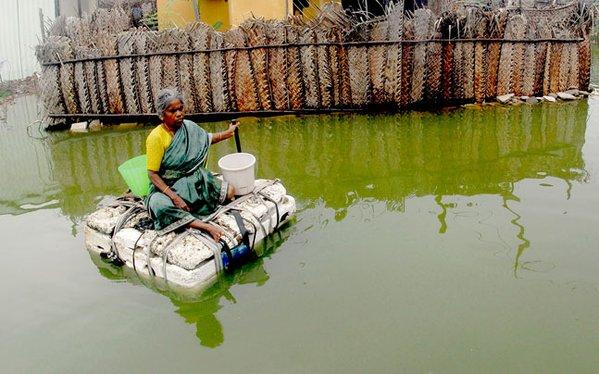 about chennai floods essay writer