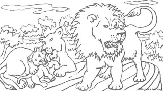 Wild Lion Animals Coloring Pages Print