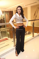 Catherine Tresa in a White Glittering Crop Top Black Leggings  Exclusive 038.JPG