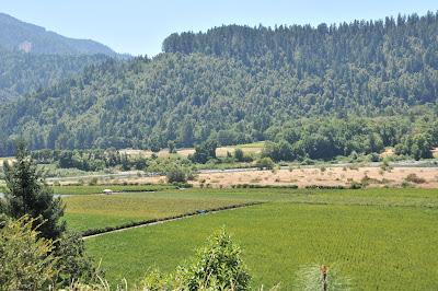 Sun Valley Willow Creek Farm Gardner