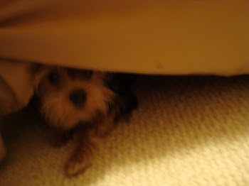 hiding from mommy........