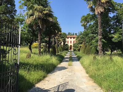 Azienda Agricola Celinate