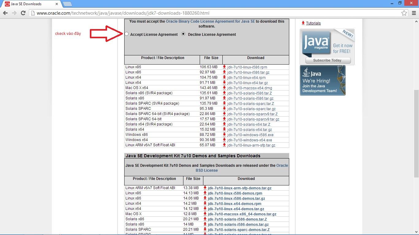 jdk pour netbeans 6.9.1 gratuit