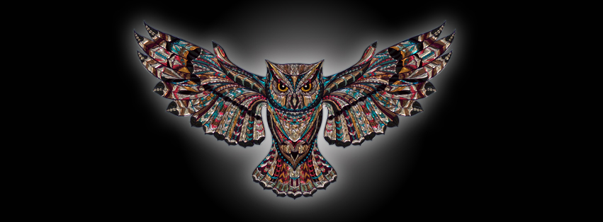 Owl | Cover Photo