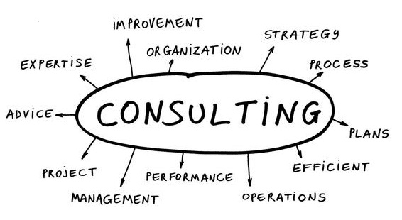 functions of a consultant