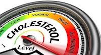 hangi bitki kolesterolü tedavi ediyor