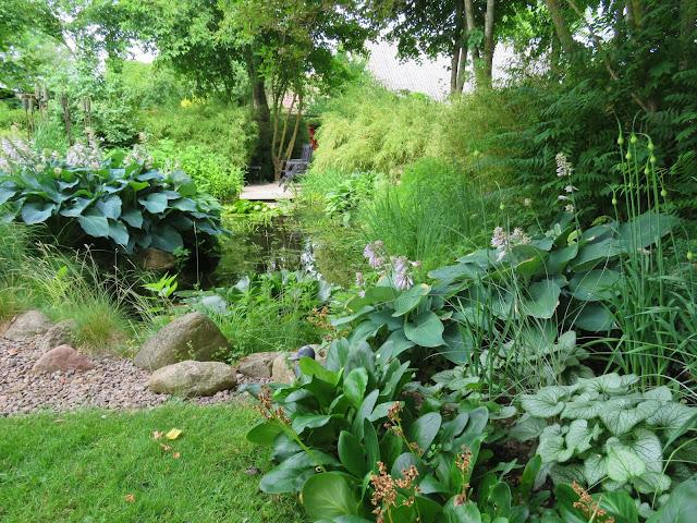 Et stille vann omkranset av planter i Lotties Trädgård. Trädgårdsrundorna i Helsingborg.