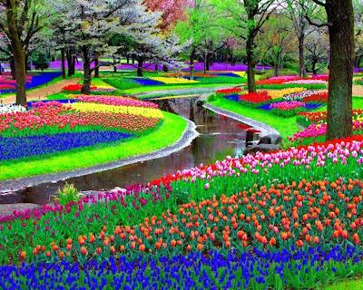 keindahan warna warni ceria